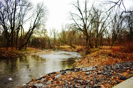 Tacony Creek
